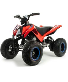 Quad hunter 24 v. - 18506024